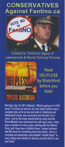 Help us defeat Julian Fantino!